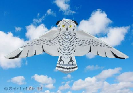 Snowy Owl Kite for Adult & Kids Bird of Prey Outdoor Camping Sports Games & Gifts